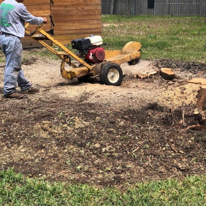 Landscping Tree Trimming Stump Grinding Houston