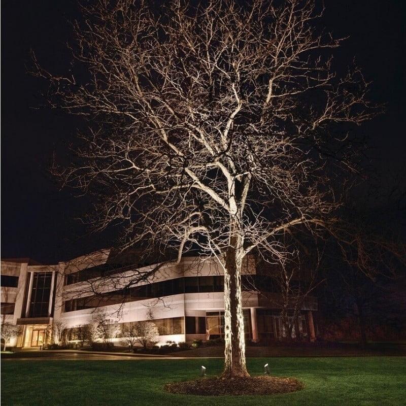 landscape lighting medium tree houston tx 77082