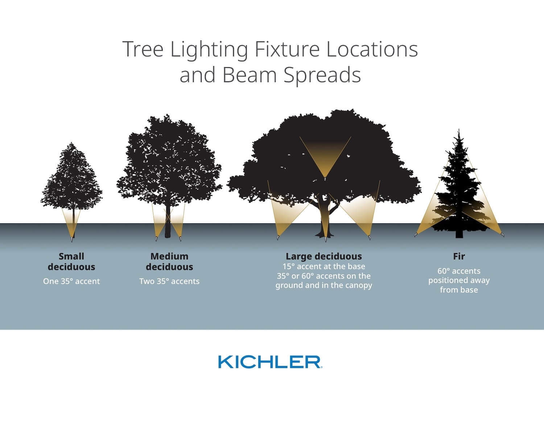 outdoor landscaping lighting ideas trees uplighting houston