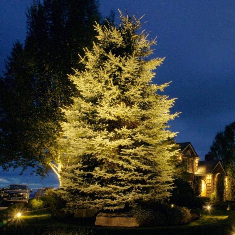 tree landscape lighting ideas houston tx 77042
