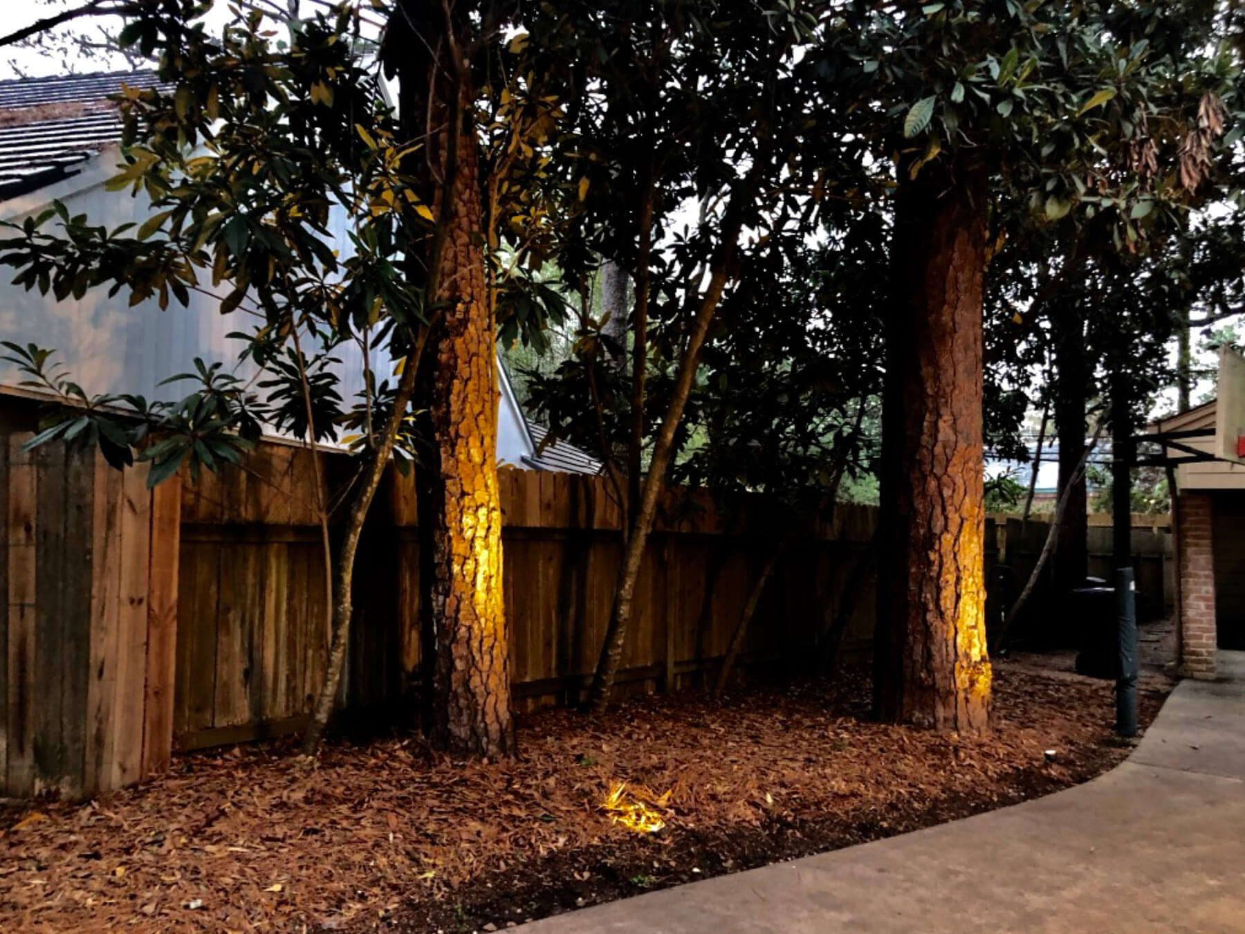 Outdoor lighting trees front yard